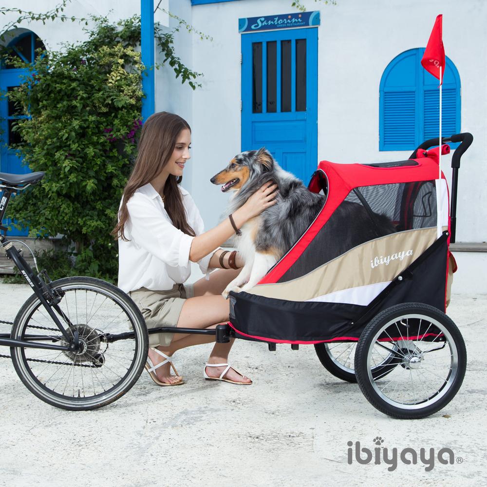 專車伺候好狗命 細數名人愛用ibiyaya寵物車