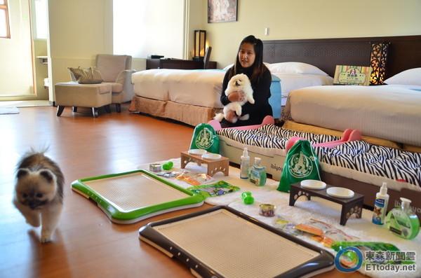 狗狗也有年夜飯!東森山林打造「友善寵物渡假飯店」
