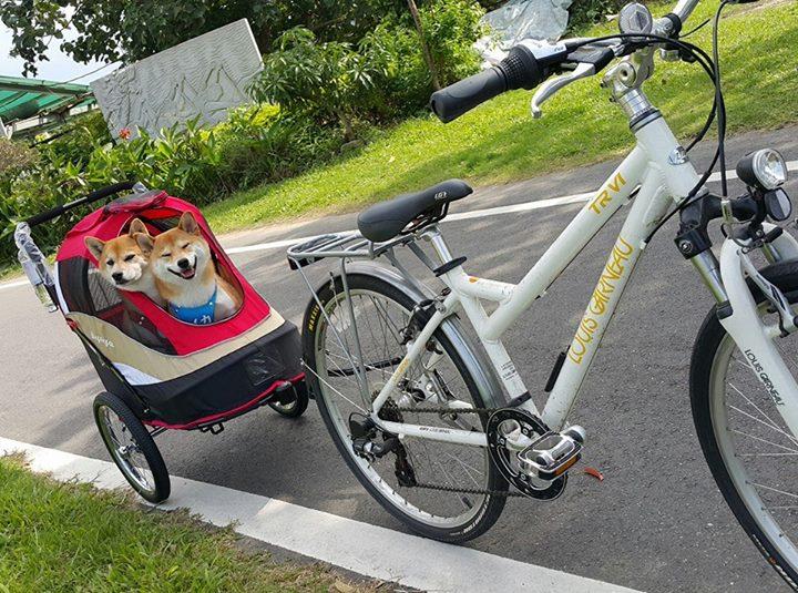 《人氣寵物》柴犬Q將~FS980二代兩用寵物推/拖車