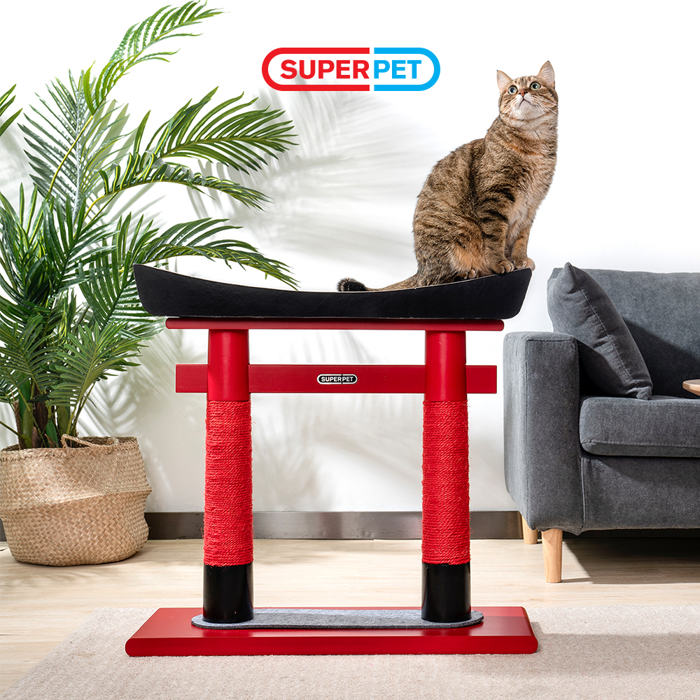 IBIYAYA 與 SUPERPET 攜手為貓咪打造舒適新生活
